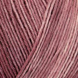 REGIA Premium Silk Color 4-fach 00045 - feige color