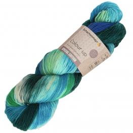Schachenmayr Colour Up 90 - frost
